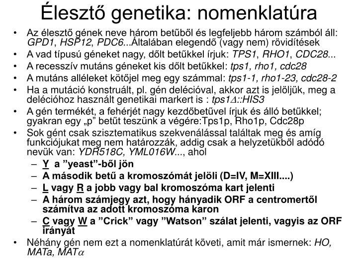 Élesztő genetika: nomenklatúra