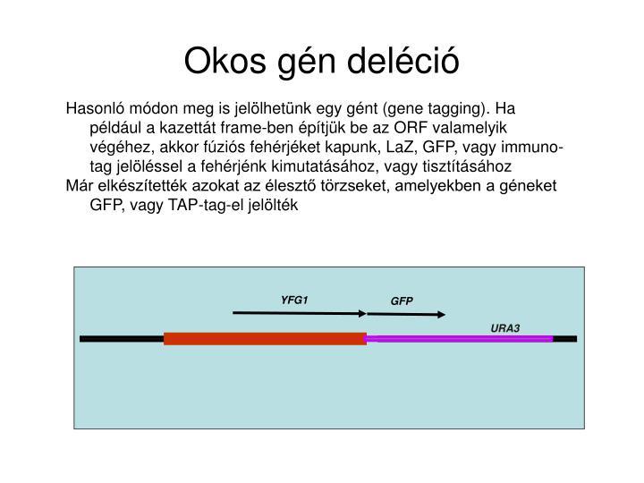 Hasonló módon meg is jelölhetünk egy gént (gene tagging). Ha például a kazettát frame-ben építjük be az ORF valamelyik végéhez, akkor fúziós fehérjéket kapunk, LaZ, GFP, vagy immuno-tag jelöléssel a fehérjénk kimutatásához, vagy tisztításához