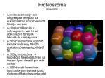 proteosz ma proteasome