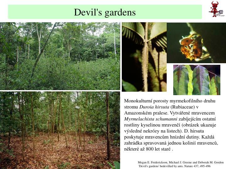 Devil's gardens