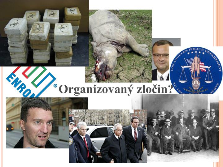Organizovaný zločin?