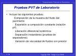 pruebas pvt de laboratorio
