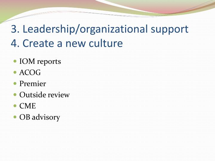 3. Leadership/organizational support