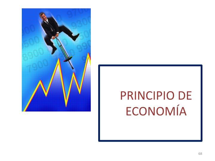 PRINCIPIO DE ECONOMÍA