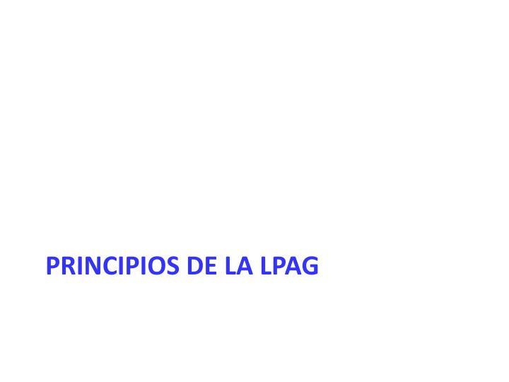 Principios de la LPAG