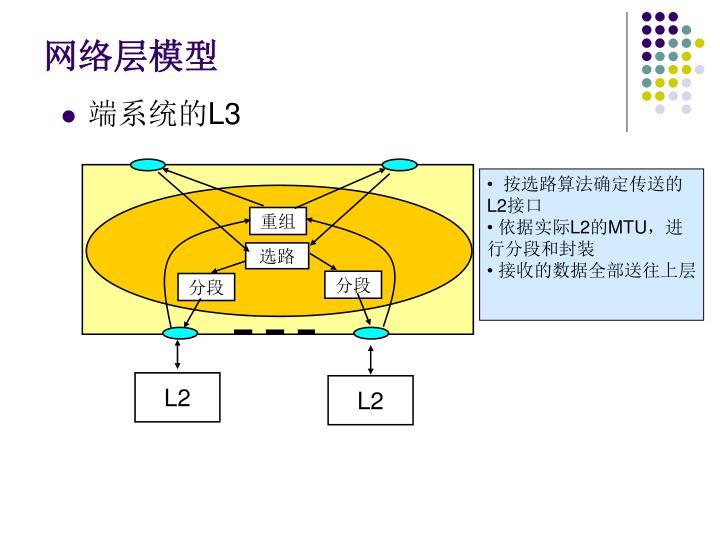 网络层模型
