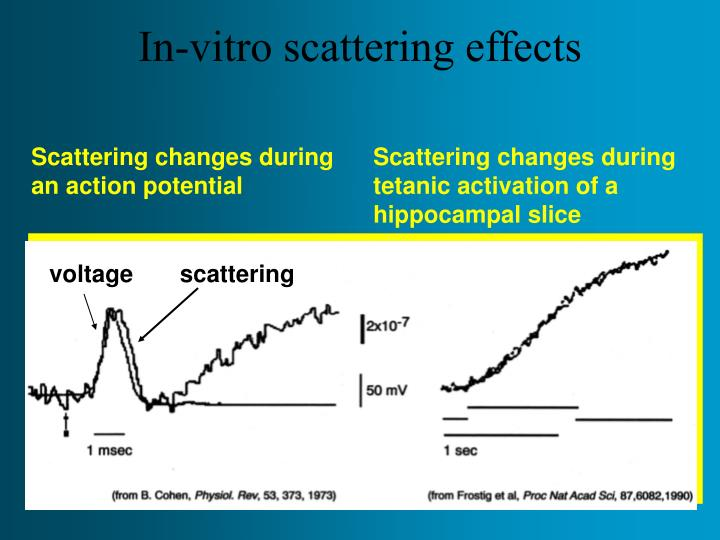 In-vitro scattering effects