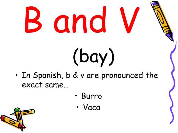 B and V