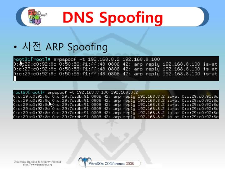 DNS Spoofing
