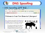 dns spoofing6