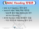 mac flooding1