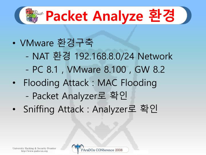 Packet Analyze