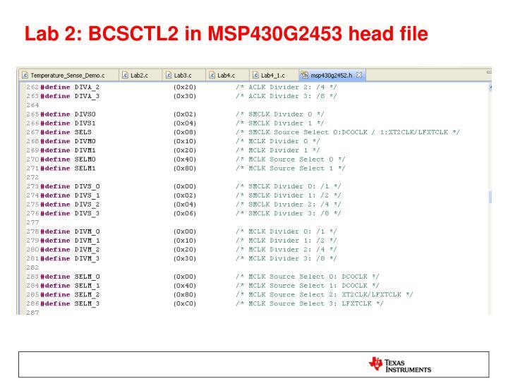 Lab 2: BCSCTL2 in MSP430G2453 head file