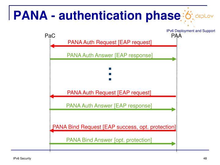 PANA - authentication phase