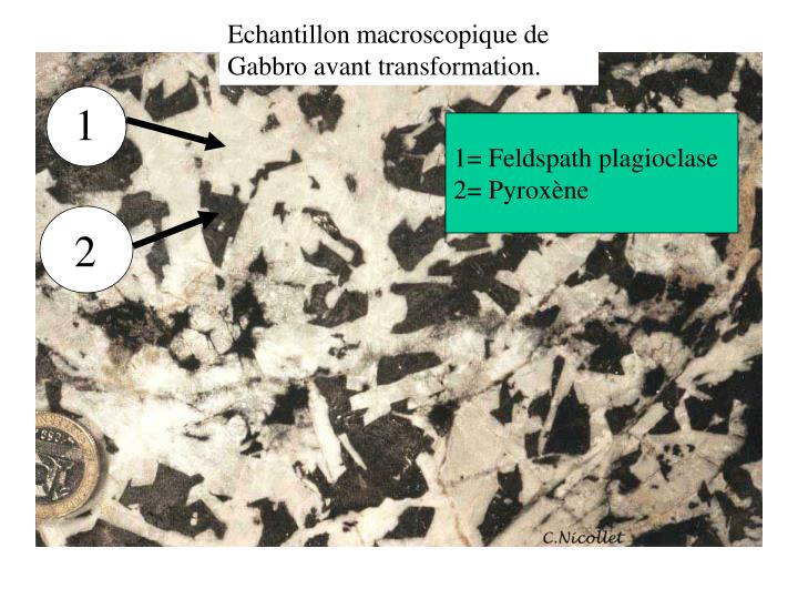 Echantillon macroscopique de Gabbro avant transformation.
