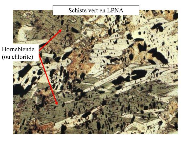 Schiste vert en LPNA
