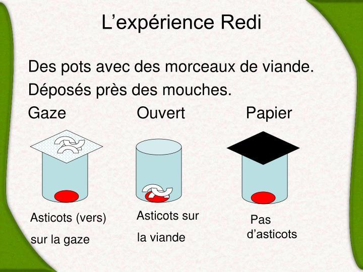 L'expérience Redi