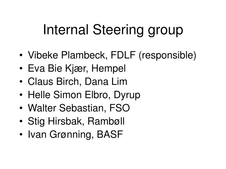Internal Steering group