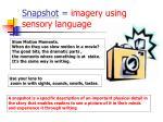 snapshot imagery using sensory language