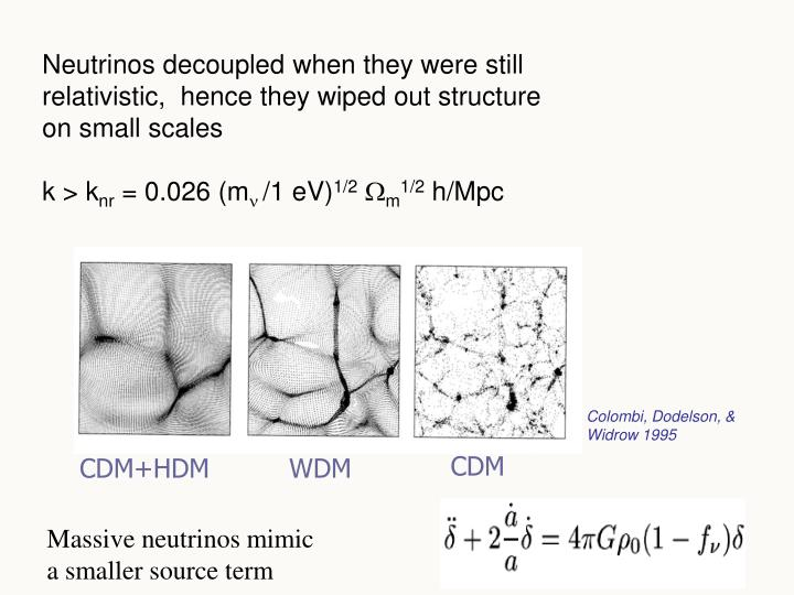 Neutrinos decoupled when they were still relativistic,  hence they wiped out structure on small scales