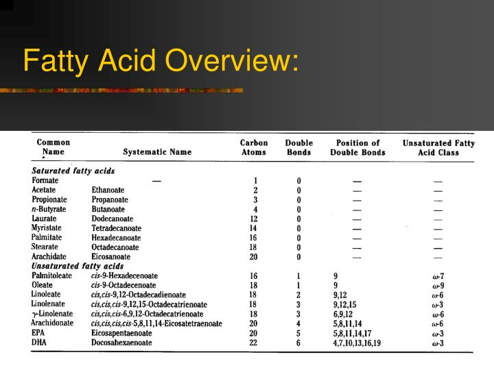 Fatty acid overview
