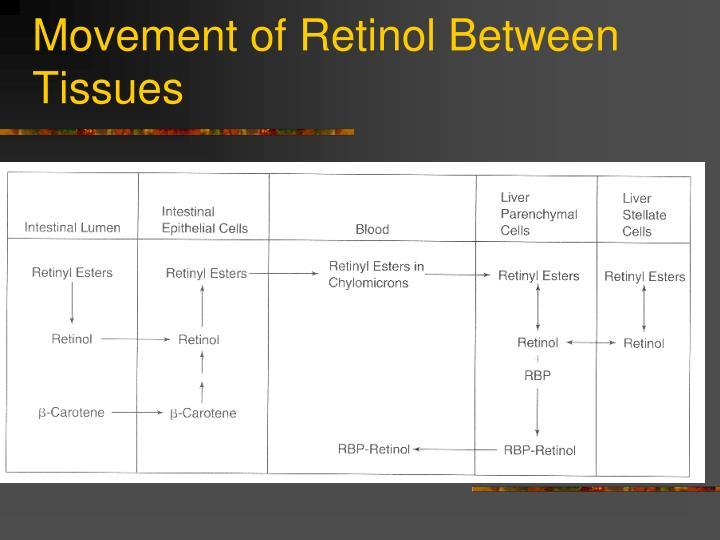 Movement of Retinol Between Tissues