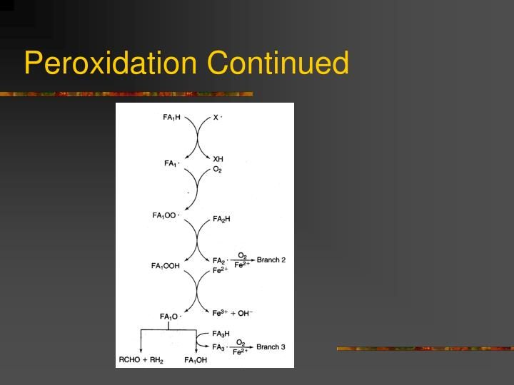 Peroxidation Continued