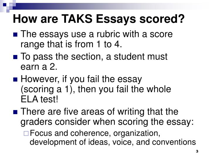 How are TAKS Essays scored?