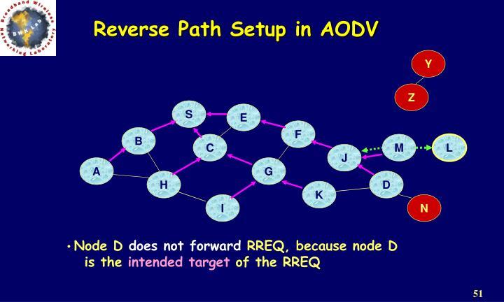 Reverse Path Setup in AODV