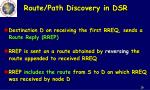 route path discovery in dsr