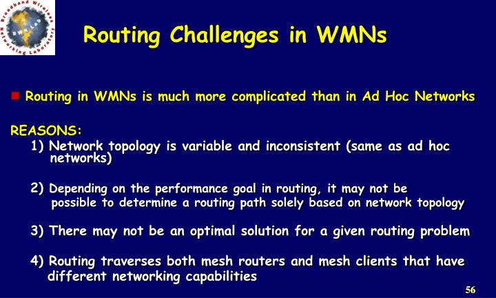 Routing Challenges in WMNs
