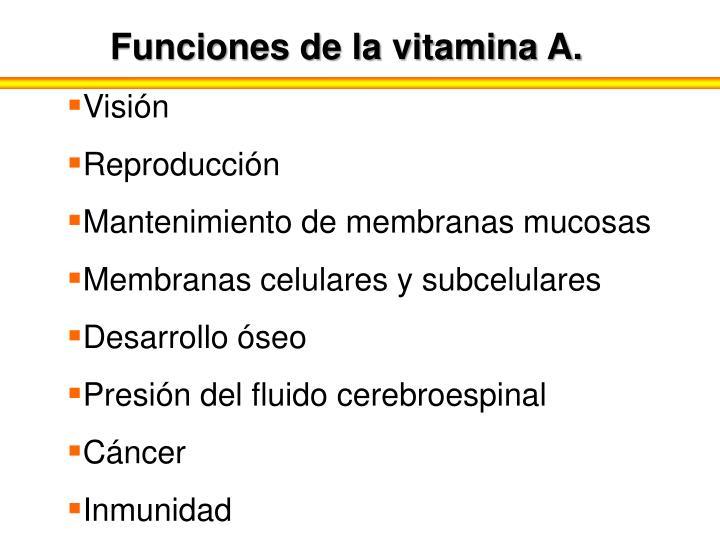 Funciones de la vitamina A.
