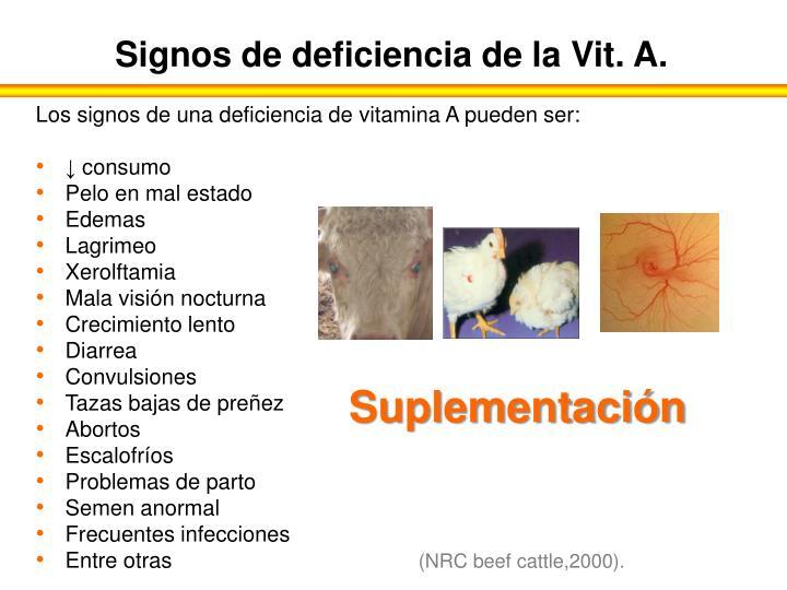 Signos de deficiencia de la Vit. A.