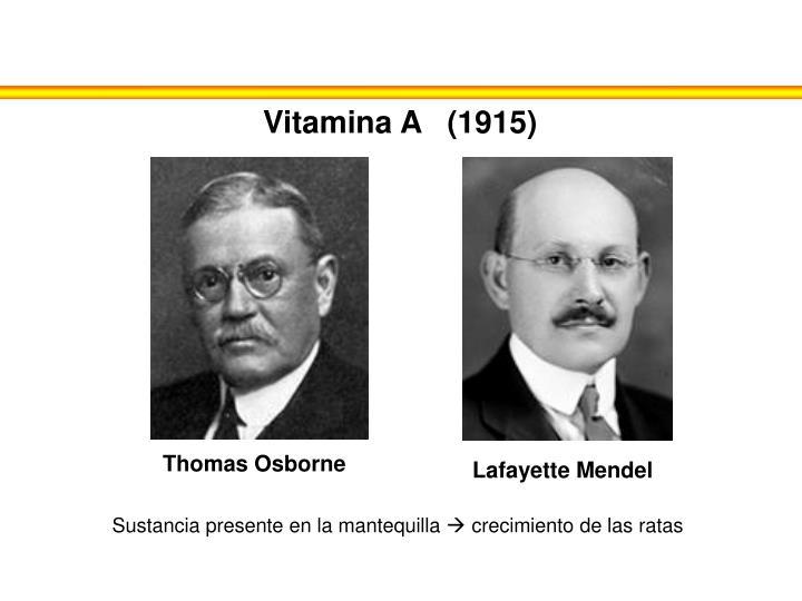 Vitamina A   (1915)