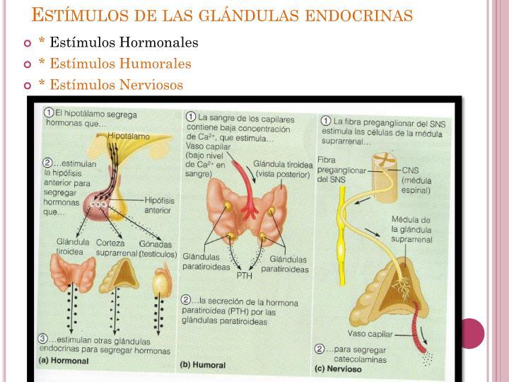 Estímulos de las glándulas endocrinas