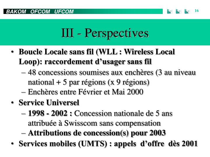 III - Perspectives