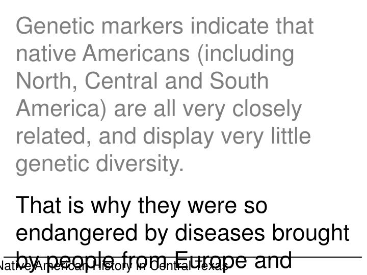 Genetic markers indicate that native Americans (including North, Central and South America) are all very closely related, and display very little genetic diversity.