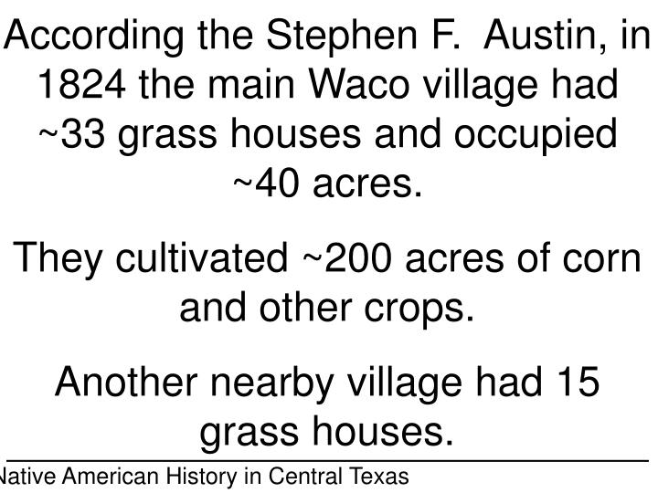 According the Stephen F.  Austin, in 1824 the main Waco village had ~33 grass houses and occupied ~40 acres.
