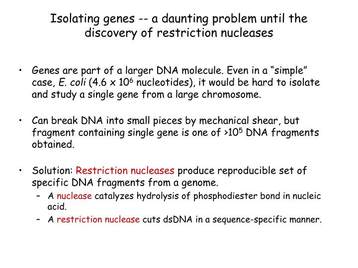 Isolating genes a daunting problem until the discovery of restriction nucleases