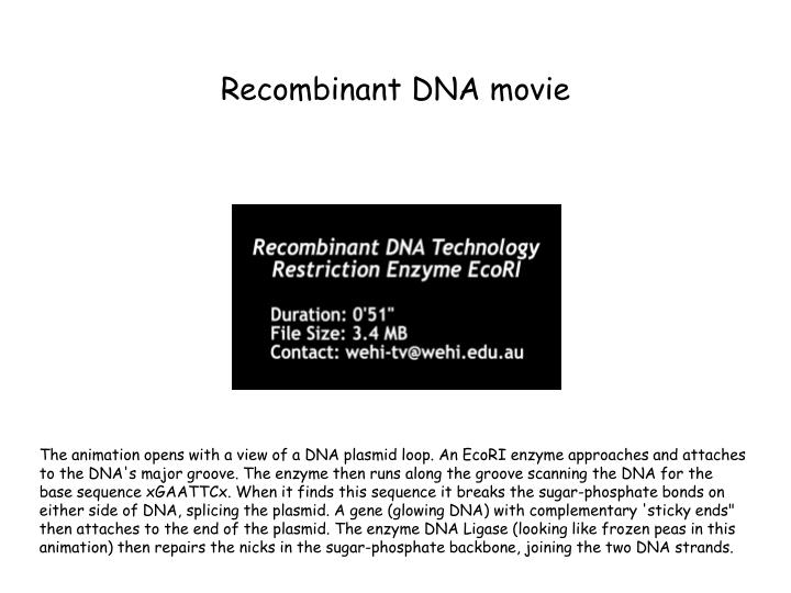 Recombinant DNA movie