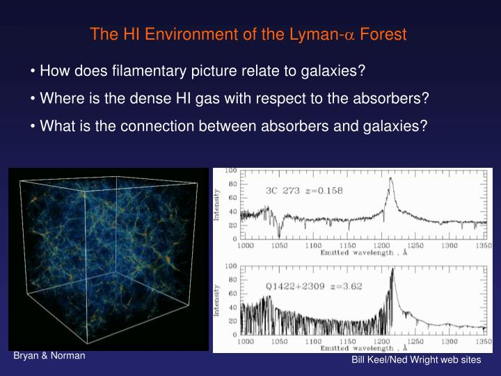 The HI Environment of the Lyman-