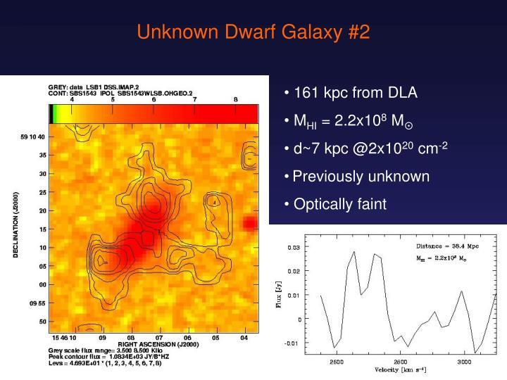 Unknown Dwarf Galaxy #2