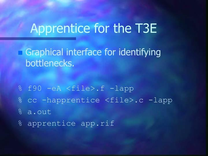 Apprentice for the T3E