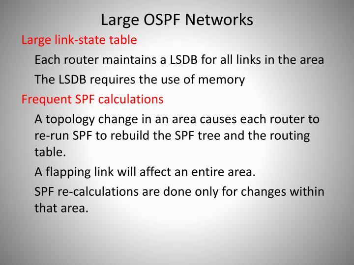 Large OSPF Networks