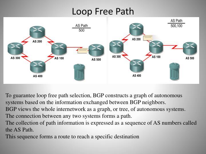 Loop Free Path