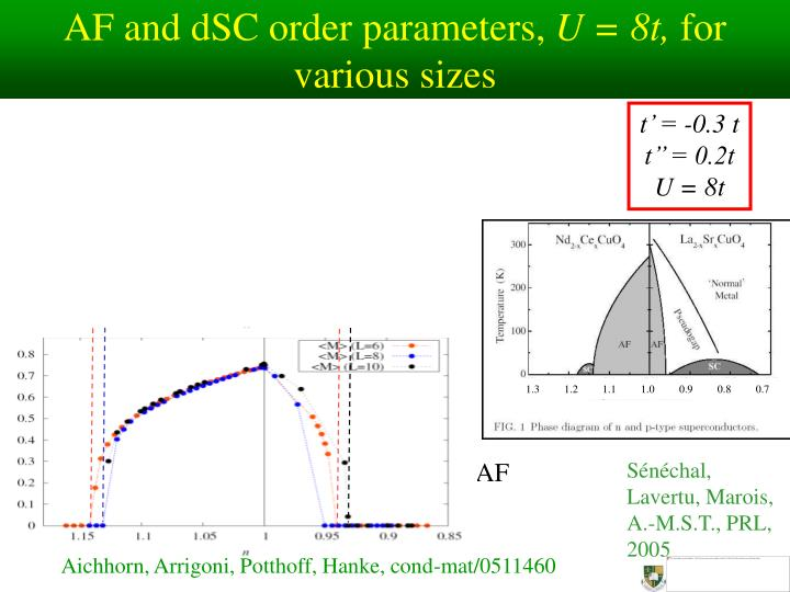 AF and dSC order parameters,