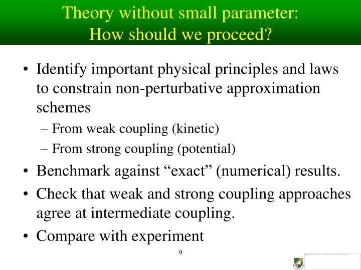 Theory without small parameter: