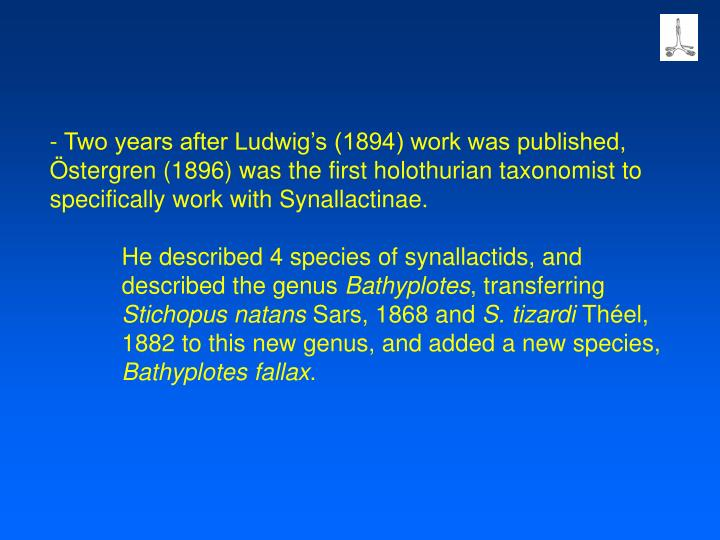 - Two years after Ludwig's (1894) work was published, Östergren (1896) was the first holothurian taxonomist to specifically work with Synallactinae.
