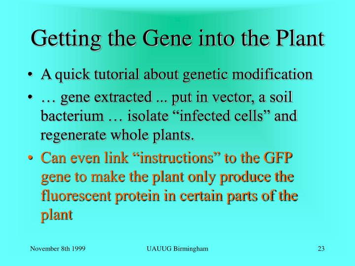 Getting the Gene into the Plant