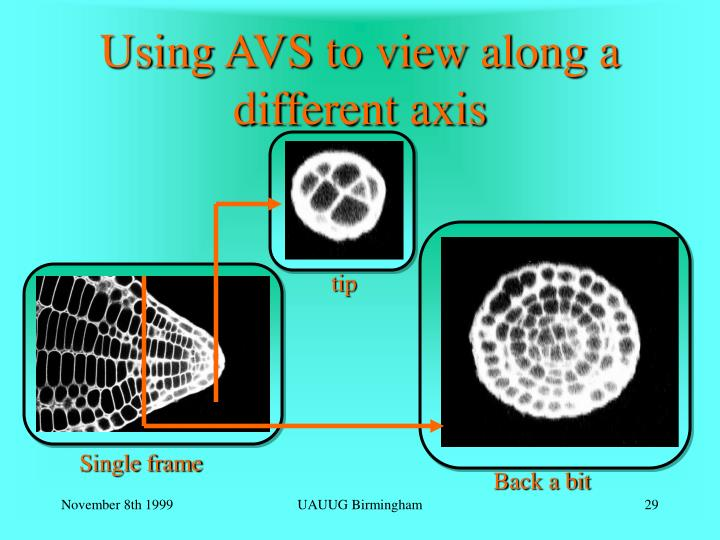 Using AVS to view along a different axis
